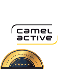 Đôi nét về giày da thương hiệu CAMEL ACTIVE
