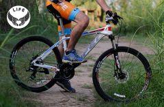 Xe đạp địa hình LIFE L38.4
