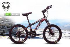 Xe đạp địa hình Life L20.2