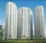Căn hộ Hoàng Anh Thanh Bình bán cho thuê mới nhất