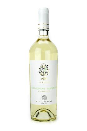 Rượu vang IL Pumo Sauvignon Malvasia Salento