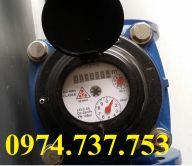 Đồng hồ nước Đệ Nhất DN 300