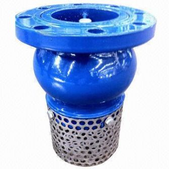 Van rọ bơm AUT Malaysia (Check foot valve AUT)
