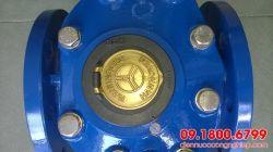 Đồng hồ nước Meinecke