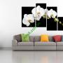 30 Mẫu tranh treo tường đẹp và hiện đại - Phần 16