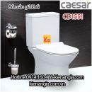Bồn cầu bệt giả khối Caesar CD1551