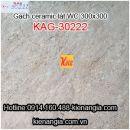 Gạch men kỹ thuật số lát WC 30X30 KAG-30222