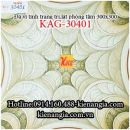 Gạch vi tinh 30x30 trang trí lát WCKAG-30401