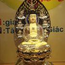 Tôn tượng Phật Thích Ca Mâu Ni