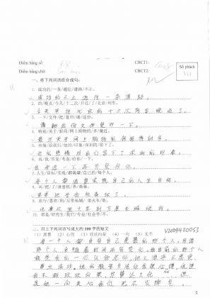 V2009420自由短文  越南旗袍 (113)