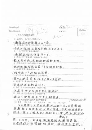 V2009420自由短文  越南旗袍 (167)