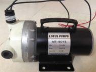 Bơm áp lực Lotus Pumps MT-6015