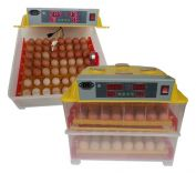 Máy ấp trứng gia cầm KN-112