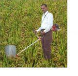 Máy gặt lúa cầm tay IE40-6F