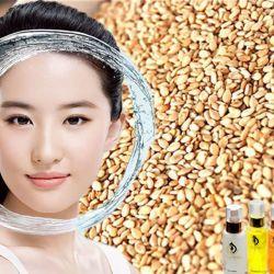 Massage mặt dầu Vừng (dành cho da nhạy cảm) - Sesame Oil (For delicate skin)