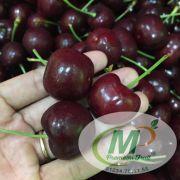 Cherry Canada Size 9