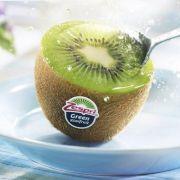 Quy Trình Trái Kiwi New Zealand