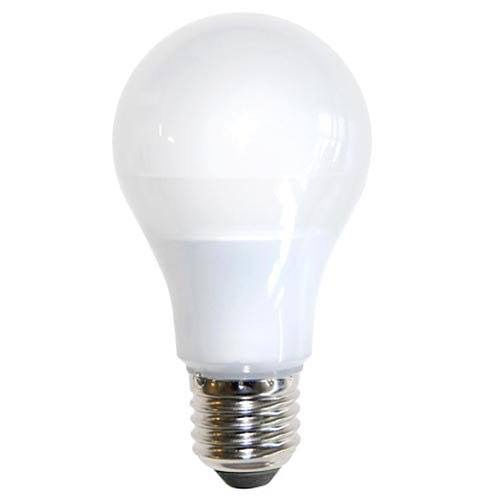 Bóng đèn LED tròn ECO BT-12V