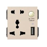 Hạt ổ cắm đôi 3 chấu + USB ArtDNA A77-H26