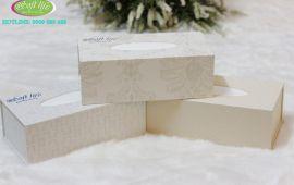 Hộp khăn giấy lụa dùng trong nhà hàng, khách sạn, resort, quán café sang trọng.