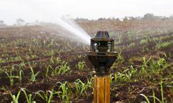Một số phương pháp tưới trong nông nghiệp