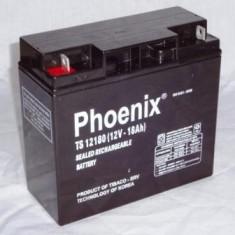 Ắc quy Phoenix 12V-18AH ( TS12180 )