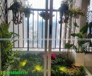 Mẫu sân vườn nhỏ chung cư 60B Nguyễn Huy Tưởng