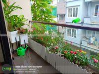 Vườn hoa hồng trên ban công