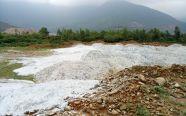 Đổ 30 tấn chất thải chưa qua xử lý ra môi trường