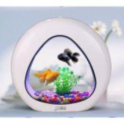 Tiểu cảnh bể cá mini để bàn đẹp mãi ( trắng )
