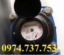 Đồng hồ đo lưu lưu lượng nước DN 300 - Đệ Nhất - LXLC