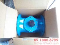 Đồng hồ nước Itron DN100, DN150, DN200, DN250, DN300