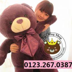 Gấu Tím lông mịn (1m2)