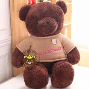 Teddy Baby socola - LIMIT EDITION ( 80cm, 1m2, 1m4, 1m6)