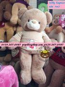 Gấu bông Teddy áo len Baymax màu cafe sữa (1m2, 1m4)