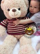 Gấu bông Teddy len sọc ngang (90cm)