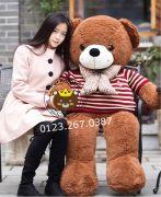Gau bong teddy nau socola ao len soc do (1m4)