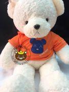 Gấu bông teddy áo nón Gloomy Bear (80cm, 1m2, 1m4)