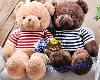 Gấu bông Teddy Baby áo len đỏ/ xanh (80cm, 1m2, 1m4)