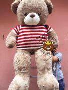 Gấu teddy nâu áo len cờ mỹ (1m2, 1m4, 1m5)