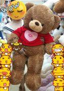 Gấu bông Teddy áo len Kiss you (1m4)