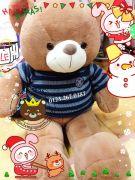 Gấu bông teddy lông mịn áo len logo hải quân (1m2, 1m5)