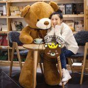 Gấu bông teddy nâu lông siêu mịn (1m2, 1m4, 1m5, 1m7)