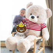 Gấu bông teddy Jinny áo len (1m5, 1m7)