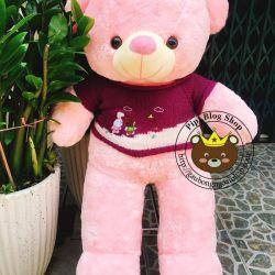 Gấu bông teddy hồng áo len tím (1m2)
