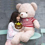 Gấu bông teddy Justin áo len sọc đỏ (1m2, 1m4)