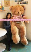 Gấu bông teddy cờ mỹ (70cm, 80cm, 1m, 1m4, 1m8)