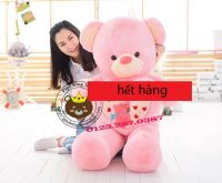Gấu ôm tim hồng Happy Everyday (1m2, 1m4)