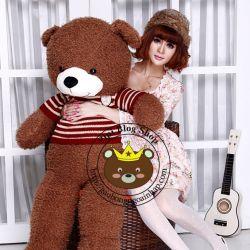 Gấu bông teddy lông xù mềm áo sọc đỏ (1m2)