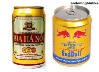 Bia Hà Nội / bò húc